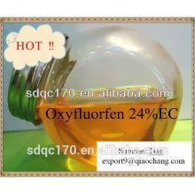 Herbicide agricole Oxyfluorfen 96% TC 240g / lEC CAS: 42874-03-3