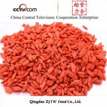 Strengthen Immunity Ningxia Organic Sun Dried Goji Berries