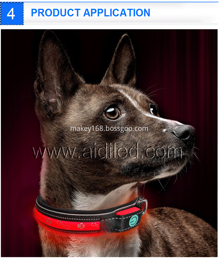 Premium Luminous Dog Collar