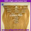 Golden Hair Top Quality Grade AAAA Wholesale Double Drawn Clip in Hair Extension