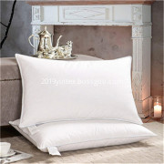 Goose feather down pillow 100% cotton fabric queen