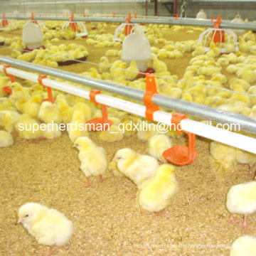 Hot Sale Automatic Poultry Farm Equipment for Broiler Chicken Farm
