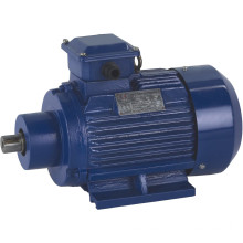 3kw Three Phase Electrical Motor (for Ceramic Machinery)
