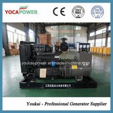 40kw 4-Stroke Engine Gerador de Energia Elétrica Diesel Gerando