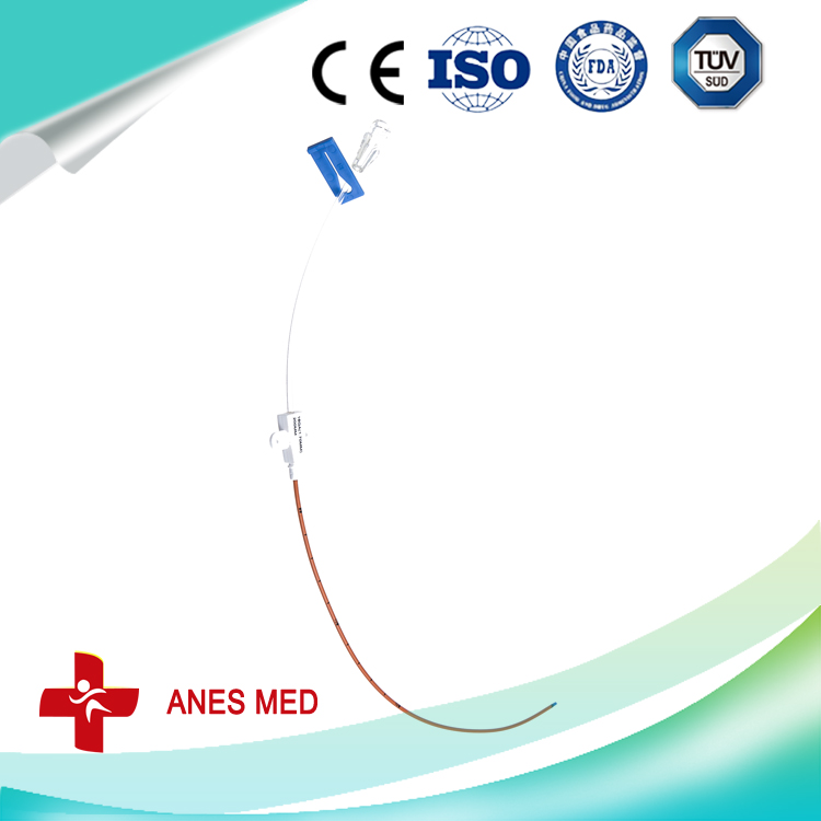 Single Lumen Antimicrobial Central Venous Catheter