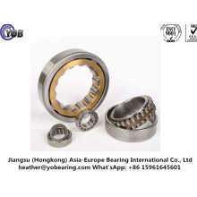 Supply Cylindrical Roller Bearing for Equipments (NU319EM)