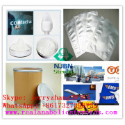Starch CAS 9005-25-8 as Food Additive  (jerryzhang001@chembj.com)