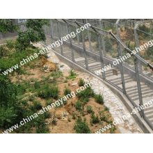 Tiger Cages & Enclosure