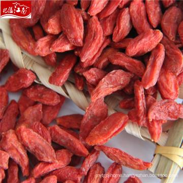New harvest wholesale herbal type berries goji