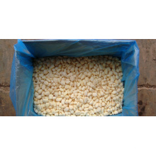 IQF prix à l'ail congelé en gros gros de l'ail en Chine