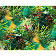 Tissu de Spandex Nylon vert pour maillots de bain (ASQ0102)