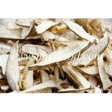 Fatias de cogumelo porcini seco selvagem orgânico