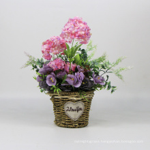 Romantic pastoral floral pink colourful flower pot plants