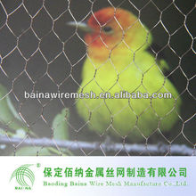 low carbon bird cage mesh
