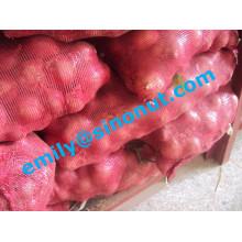 Cebola Vermelha Fresca Embalada com 5/10 / 20kg Mesh Bag