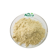 Natürlicher Gynostemma pentaphyllum-Extrakt