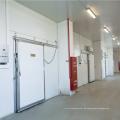 Professioneller Tiefkühlkost-Gefrierschrank-Kühlraum