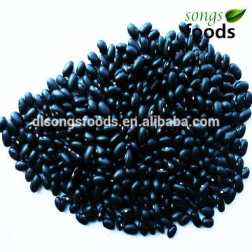 Black Beans, Black Beans Especificaciones