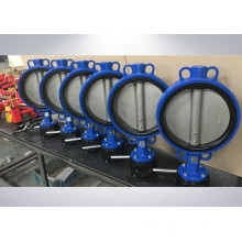 Made in China Butterfly Valve Pn16
