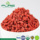 New Arrived Certified Organic Wolfberry/ Organic Goji Fruit