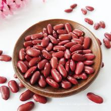 Pulses 2021 Crop British Red Kidney Bean