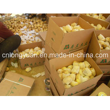 Shandong Origin Fresh Potato Nouvelle saison