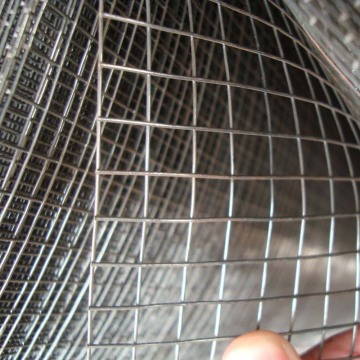 3/4 inci Stainless Steel Welded Wire Mesh