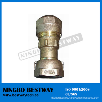 China Brass Water Meter Accessories Professional Manufacturer (BW-711)