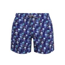 Пляжные шорты с принтом на шнурке, плавки, мужские купальники
