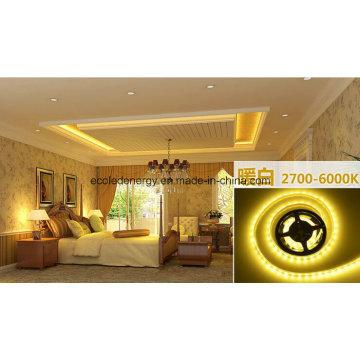 14.4W Ce and Rhos 60SMD3014 Warm White LED Strip