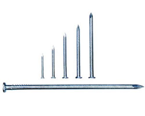 Polished Common Wire Nail for Construction