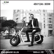2016 Scooter Electrique Adulte sans Brushless style Harley Style 2016