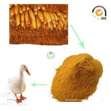 Venta caliente de la comida para animales de la comida del gluten del maíz