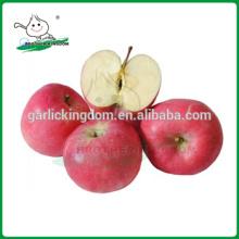 Grado uno fresco de oro manzana deliciosa / chino fresco Fuji Apple rojo