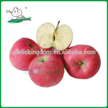 grade one fresh golden delicious apple/Chinese Fresh Red Fuji Apple