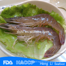 HL002 Frozen best price hoso vannamei white shrimp