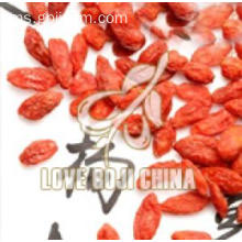 Rendah Pestisida Konvensional kering Plump Goji Berries