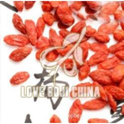 Organic CHINESE Dried Plump Goji Berry