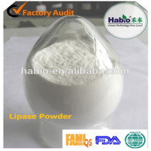 Outstanding Efficiency Lipase Enzyme Powder for food industry