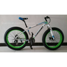 Steel Frame Fat Tire Mountain Bicycle (FP-MTB-FAT03)