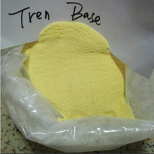 Anabolic Anti Aging Steroids Yellow Powder Trenbolone Acetate CAS 10161-34-9