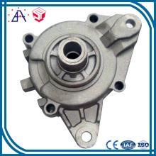 Высокой точности OEM изготовленный на заказ алюминиевая заливка формы, приспособление освещения (SYD0001)