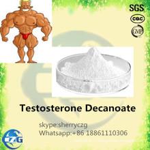 Мышца Строя Сырцовый Порошок Стероидов Decanoate Тестостерона