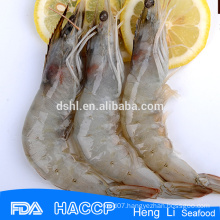 HL002 Frozen best price shrimp