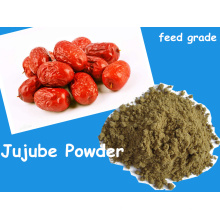 Jujube Pwoder From Fruit Poudre pour l'alimentation