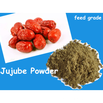 Jujube Pwoder From Fruit Poudre pour l'alimentation