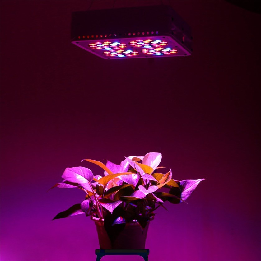 650mA 4kg led grow light