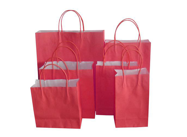 Paper carrier bag3