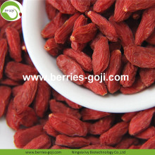 Grossiste en vrac à faible teneur en pesticides Goji Berry