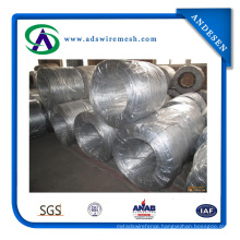 High Quality Galvanized Iron Wire (ADS-GW-01)